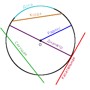 Изображение окружности, радиуса, диаметра, хорды, дуги, секущей и касательной